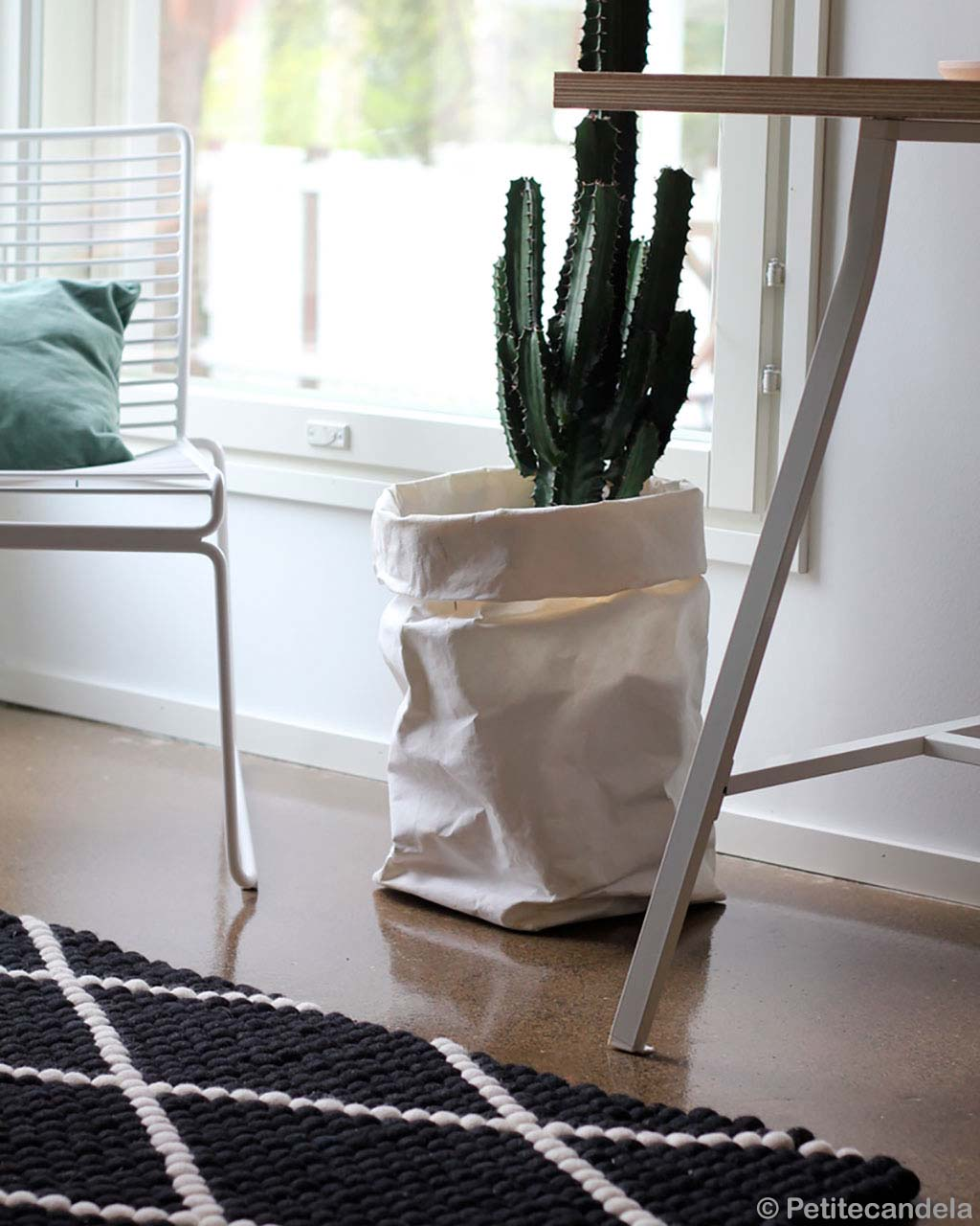 woolen pot with cactus and steel chair asian modern carpet