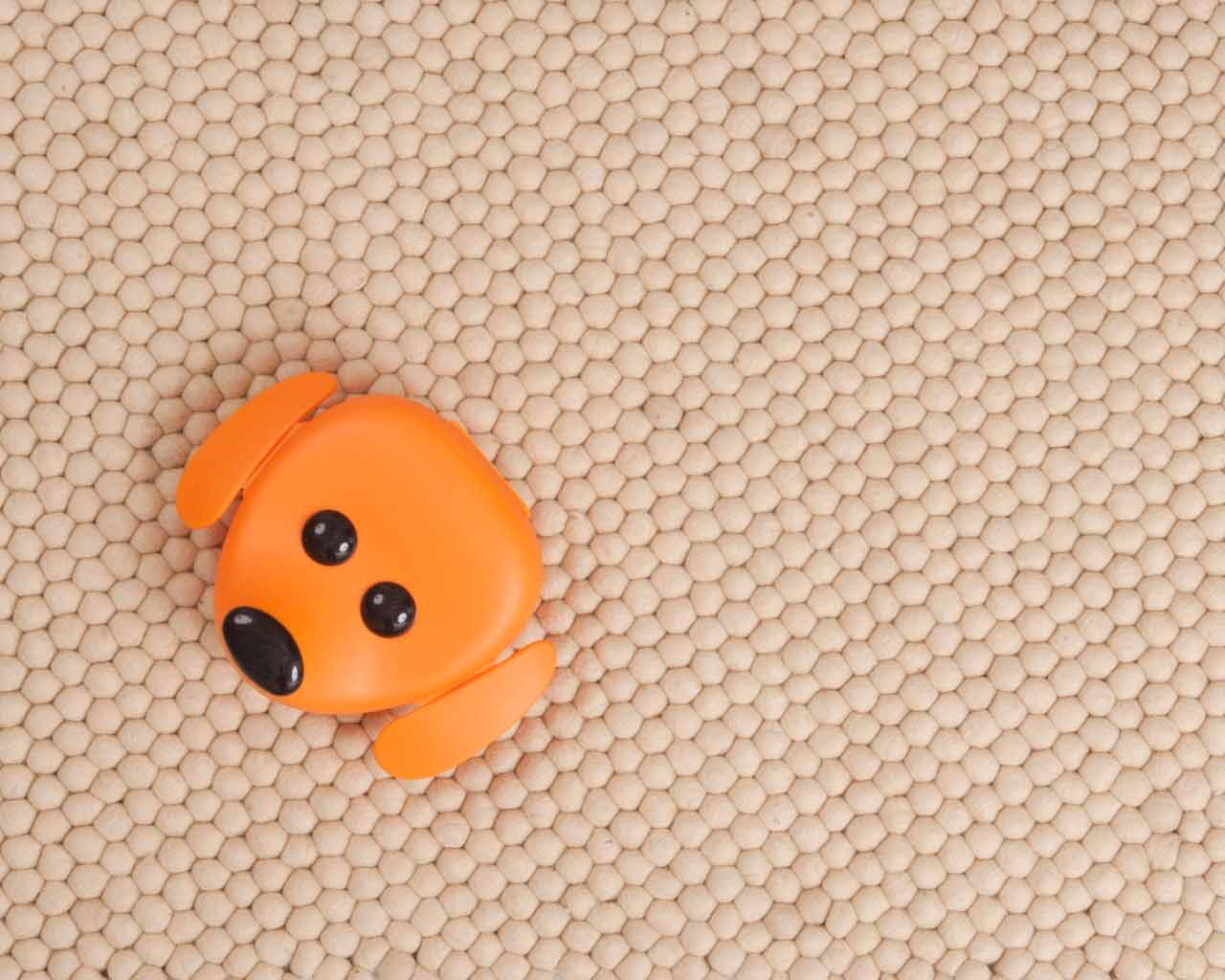 orange bear carpet neutral natural